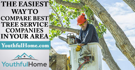 Top Local Tree Care Service Companies Near Me Tree